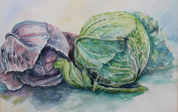 Cabbages   Watercolour